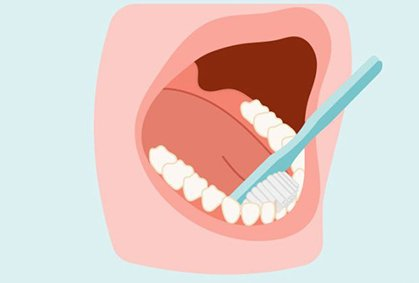 Brush lower inside surface of teeth